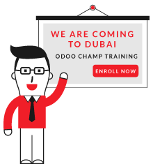 Odoo/Open ERP Functional Tanning,Odoo Functional Training Module